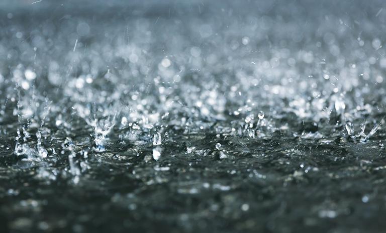 camionetas bajo la lluvia