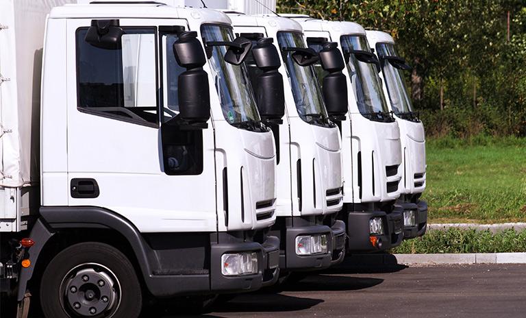 flotillas de carros y camionetas utilitarias