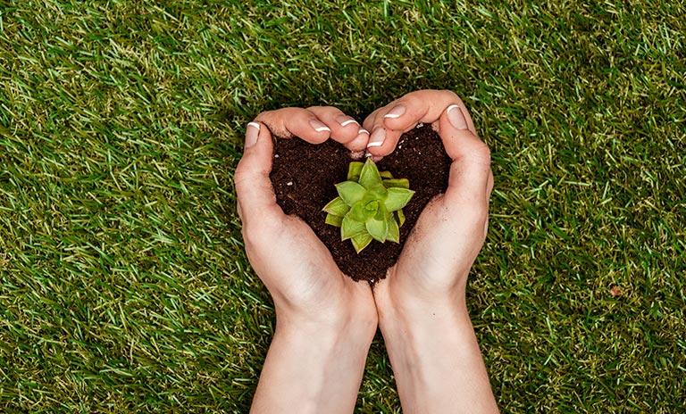 sembrando una planta en el Día Internacional de la Tierra