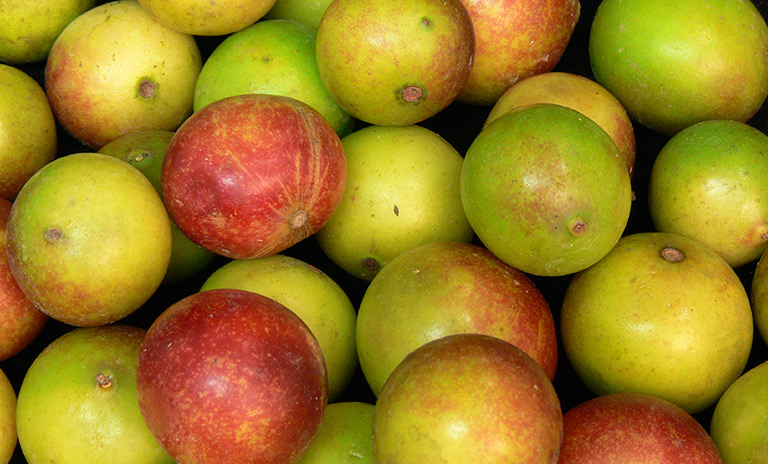 El camu camu es uno de los alimentos con más vitamina C