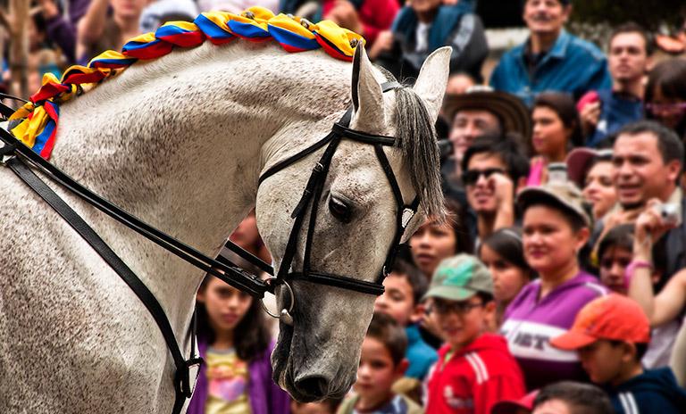 Desfile en celebración del día de la independencia colombiana