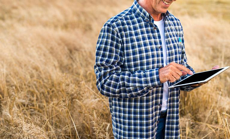 Agrónomo trabajando en un campo de trigo
