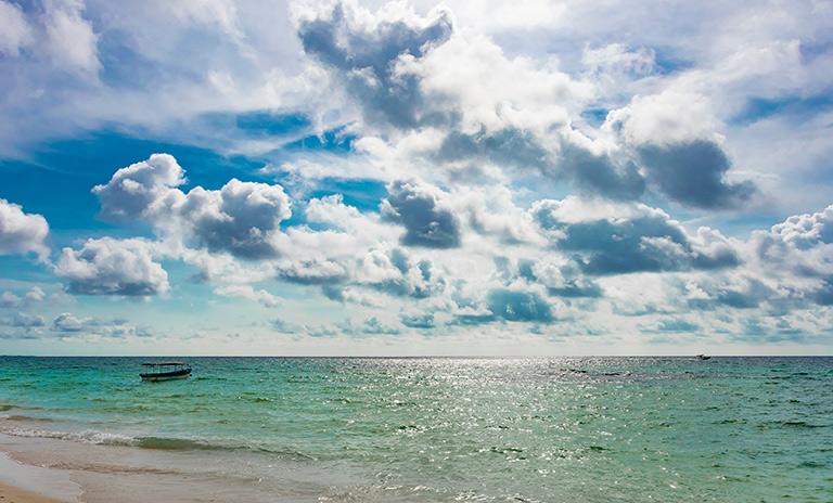Viajar a la playa en carro a Isla Barú